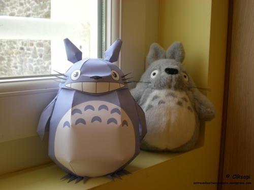 Totoro-entreveilleetserendipite