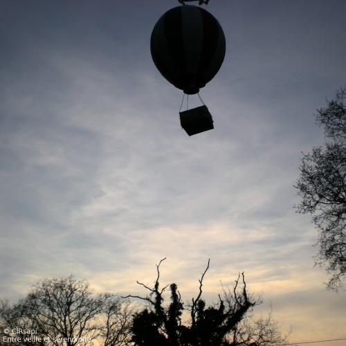 2010 Mongolfière#03