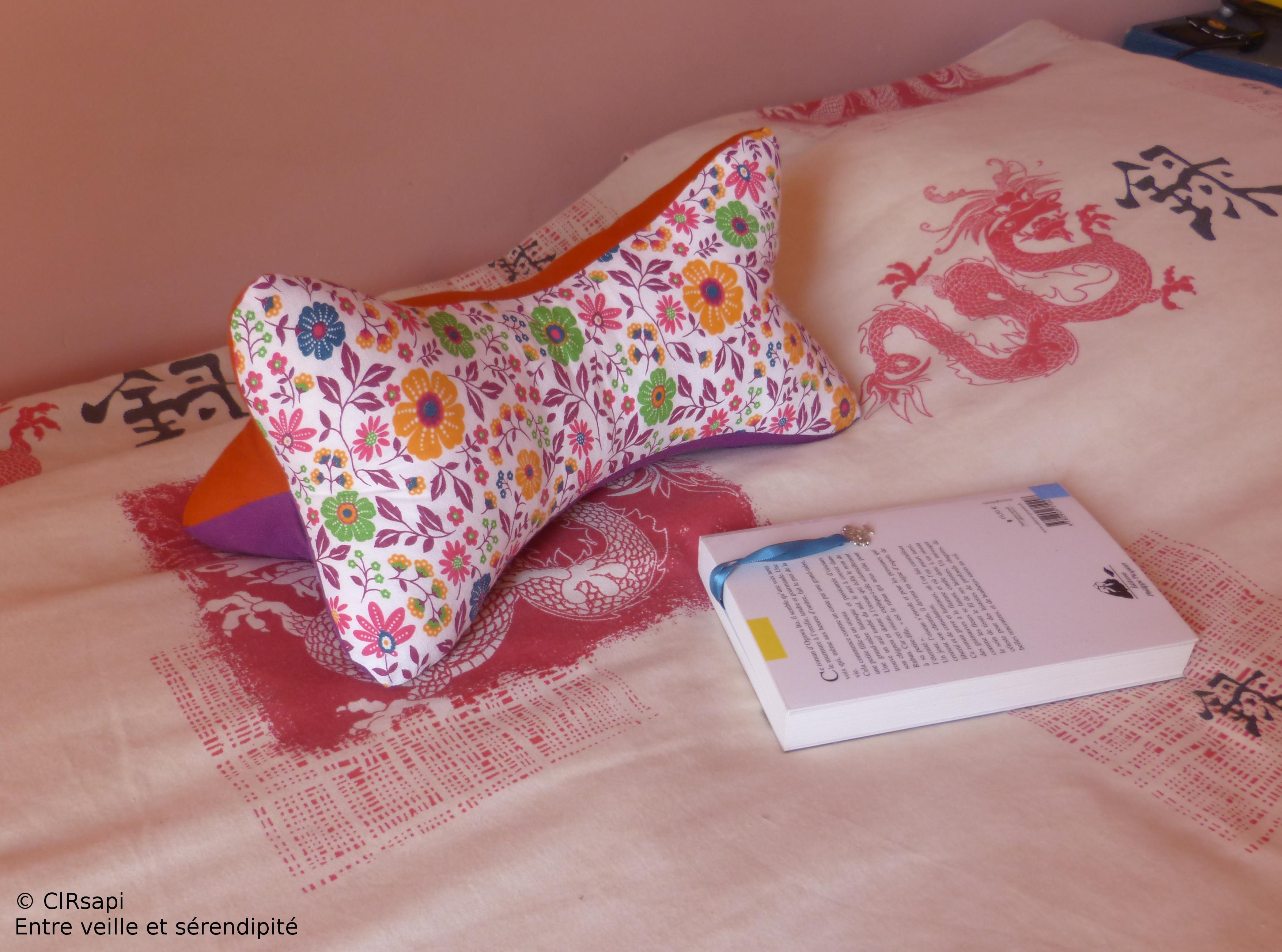 un coussin de lecture les d fis du chat entre veille et s rendipit. Black Bedroom Furniture Sets. Home Design Ideas