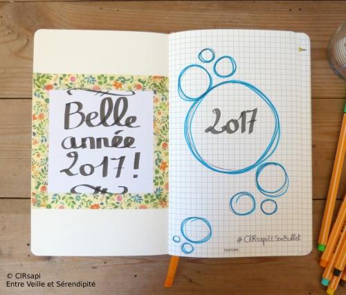 2017bulletjournalclrsapi2